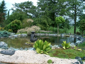 Vijver overloon voor aanleg en onderhoud van uw vijver for Aanleg koivijver