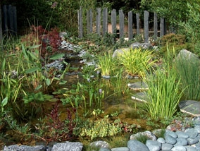 Vijver overloon voor aanleg en onderhoud van uw vijver for Vijverpomp voor grote vijver